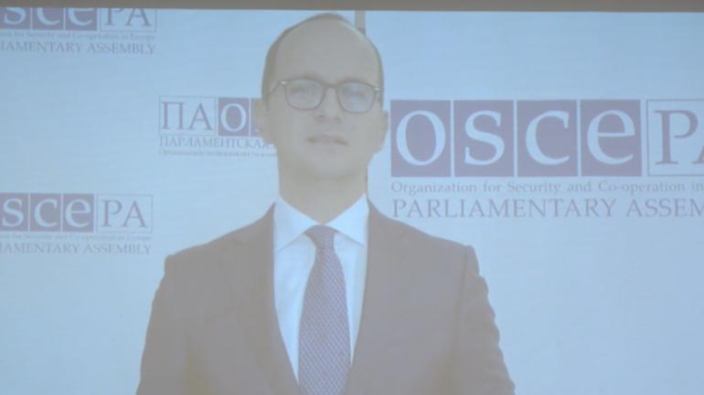 Conferință de presă a misiunii internaționale de observare pentru alegerile parlamentare anticipate din Moldova